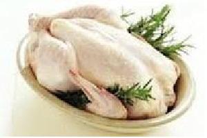 قیمت مرغ بیش از ۴۵۰۰ تومان غیر منطقی است